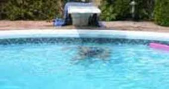 Incidente in piscina. Bimbo cade dal trampolino e si ferisce ai genitali