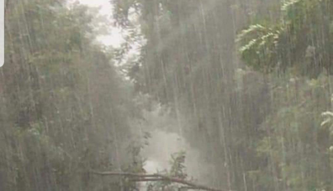 FOTO & VIDEO. Maltempo e danni: salvato automobilista dal nubifragio - CasertaCE